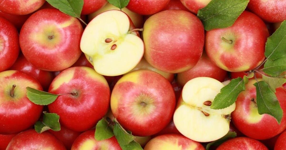 Российский врач раскрыла опасность большого количества яблок