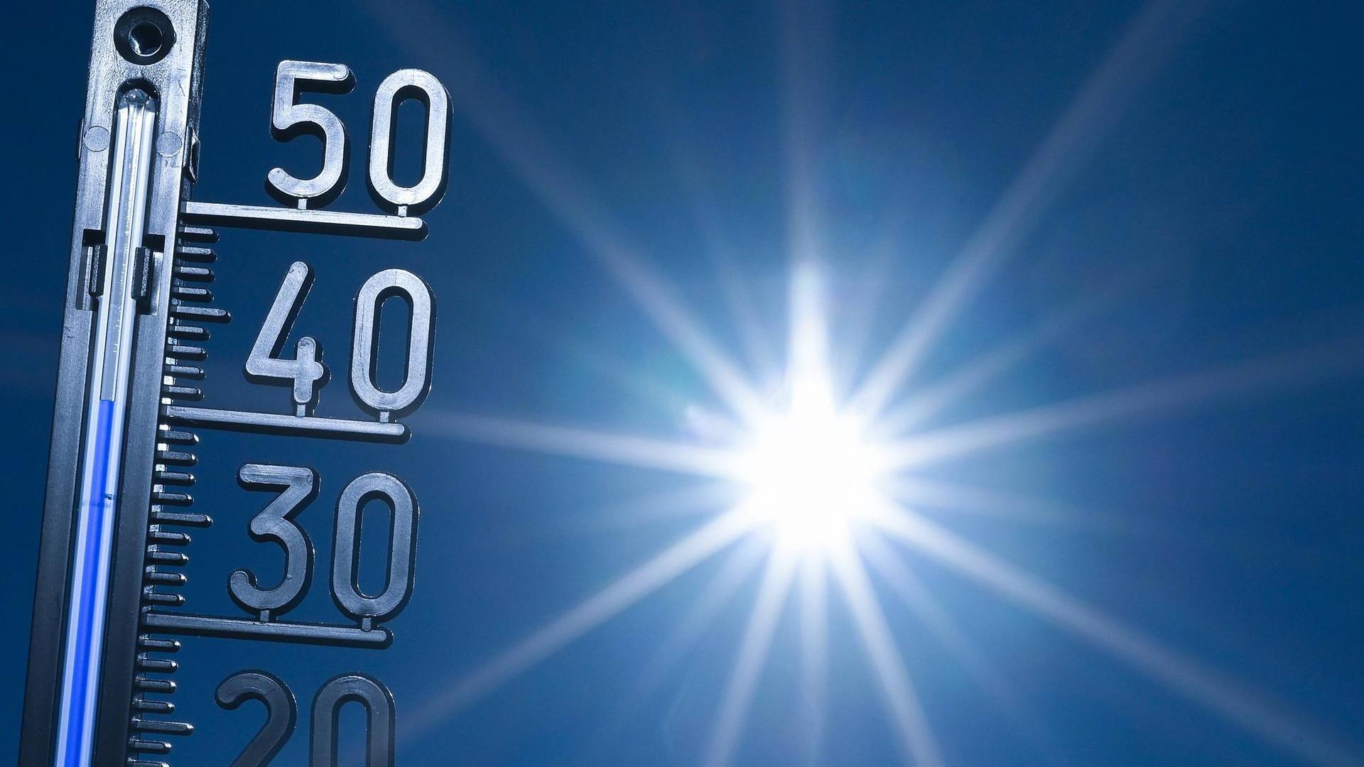 Учёные рассказали об опасном для жизни повышении температуры в городах по всему миру