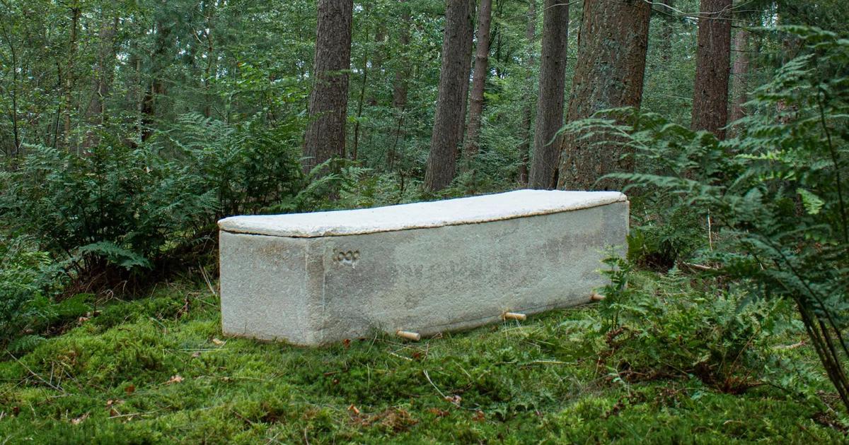 Создано первое в мире экологически чистое кладбище