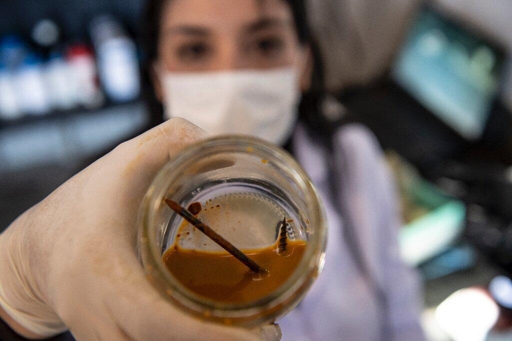 Учёные научили бактерии ускоренно поедать металлы