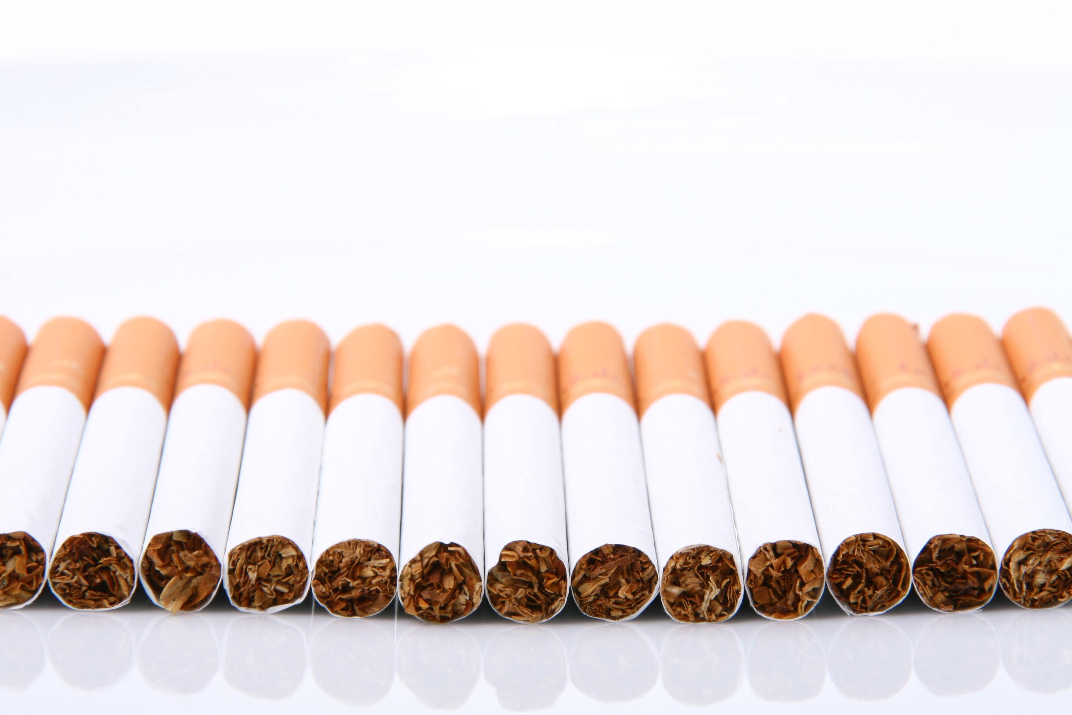 Учёные: люди начали курить табак ещё во времена мамонтов