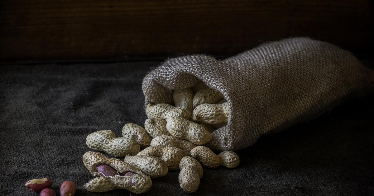 Названы ещё 5 побочных эффектов от употребления арахиса