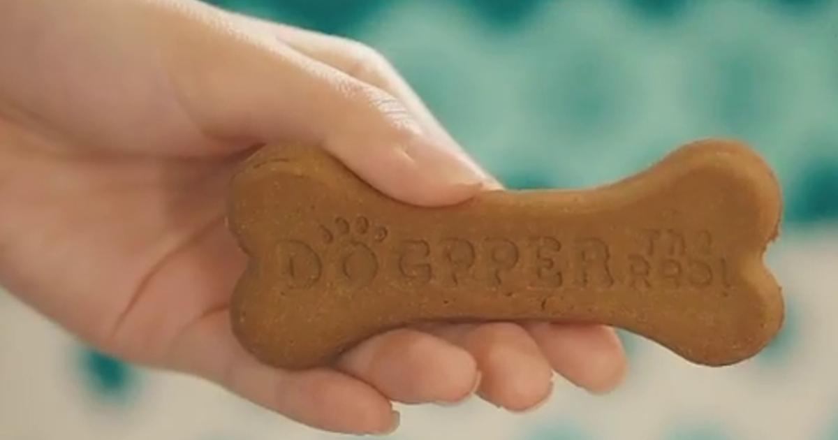 Созданы специальные бургеры для собак