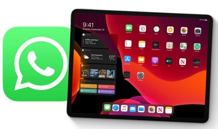 WhatsApp впервые появится на iPad