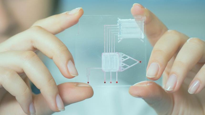 В России создадут биочип для определения COVID-19
